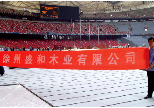 The 2008 Beijing Olympic Games